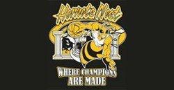 Hornets Black