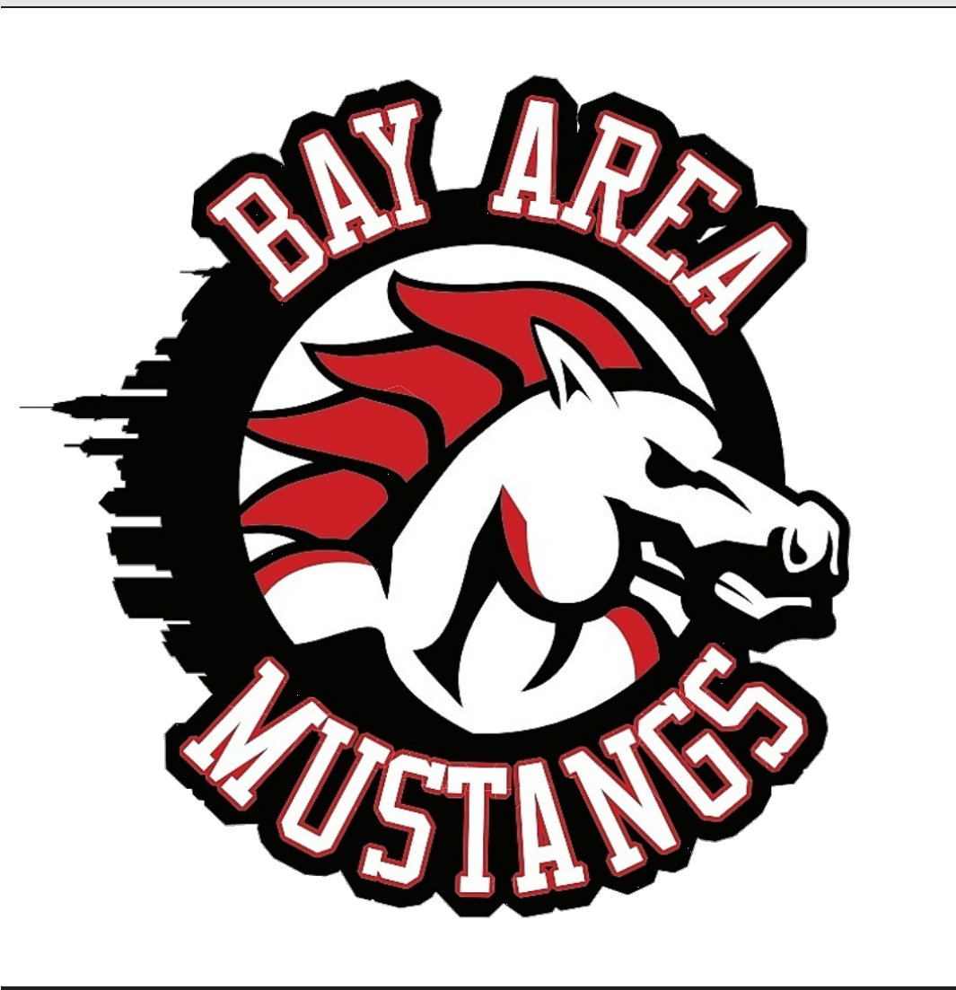Bay Area Mustangs